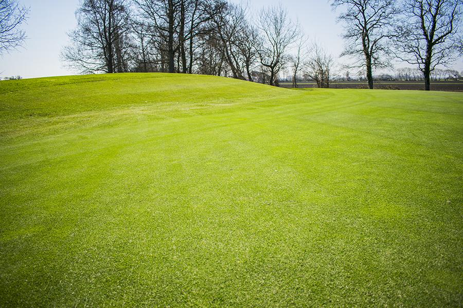 S:t Arild golfbana